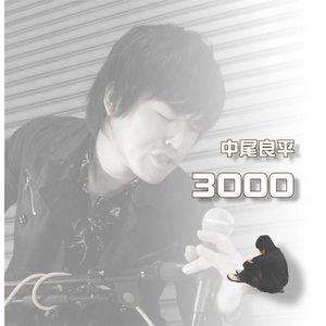 3000 ※セール商品